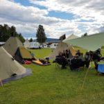 Svenska Pärlor Tälttouring 2020